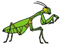 praying-mantis-clip-art-praying-mantis-clipart-2.jpg